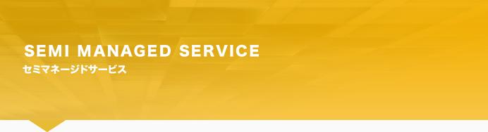 SEMI MANAGED SERVICE システム関連のスリム化に最適