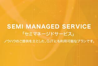 セミマネージドサービス SEMI MANAGED SERVICE コンサルティングとリソースマネジメントをRHEMSが担当。実作業は御社リソースにて管理・運用・構築を行うプランです。